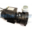 """LP300 LX Spa Pump - 3hp 1 Speed (2""""x 2"""")"""