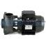 "2hp 1 Speed Executive 48F Waterway Spa Pump (2.5""x2"")"