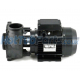 "1.5hp 1 Speed Executive 48F Waterway Spa Pump (2.5""x2"")"