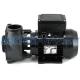 "1.5HP 2Speed Executive 48F Waterway Spa Pump(2.5""x2"")"