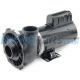 2HP 2 Speed Waterway Executive 48 Pump (US Model) 2x2