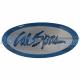 Cal Spas Pillow Insert Logo
